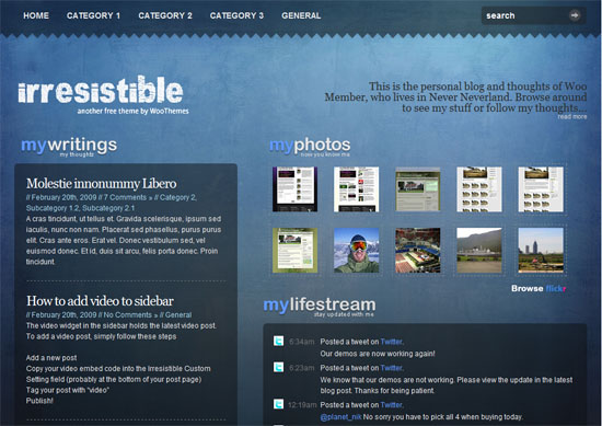 02 20 irresitible - Free WordPress Themes: 40 Excelente temas