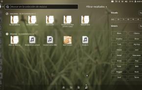dash music 290x185 - Já esta disponível o novo Ubuntu 11.10