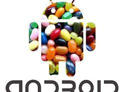 Android 5.0 Jelly Bean poderia estar disponível em Junho